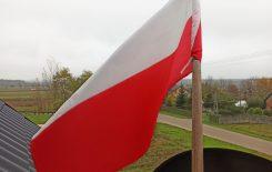 Więcej o: Narodowe Święto Niepodległości – Wywieś flagę – odzew naszych uczniów