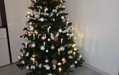 Więcej o: Święta Bożego Narodzenia w domach naszych uczniów – galeria świąteczna