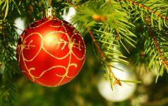Więcej o: Czas Bożego Narodzenia